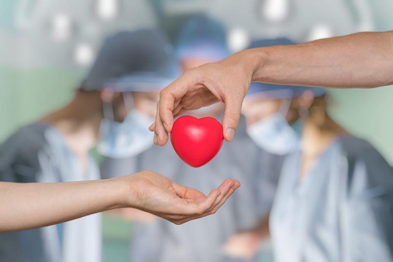 27 de setembro: dia nacional de doação de órgãos no brasil